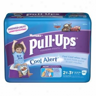Huggies Pull-ups Training Pants Concerning Boys Witg Refrigerate Alert, Mega Pack, Size 2t-3t, 40 Ea