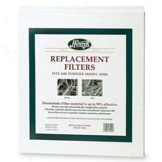 Hunter Hepatech Replacement Filter, Fits Air Purifier Model 30300