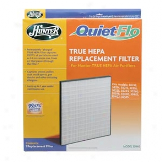 Hunter Quietflo, True Hepa Replacement Filter, Model 30940