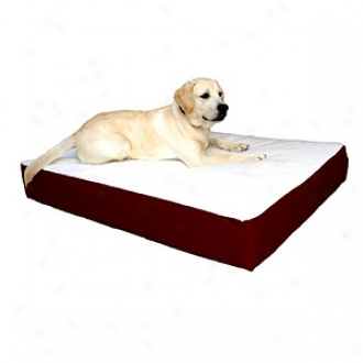 Majestic Pet Products Orthopedic Double Pet Bed Lqrge - Extra Large 34x48, Burgundy