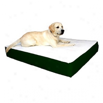 Majestic Pet Products Orthopedic Double Pet Bed Larrge - Extra Large 34x48, Green