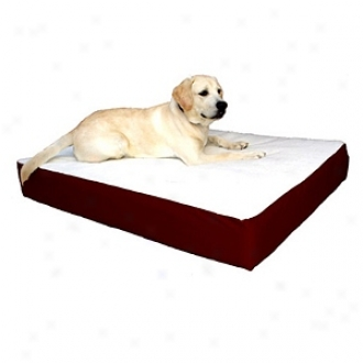 Majestic Pet Products Orthopeeic Double Pet Bed Small - Medium 24x34, Burgundy