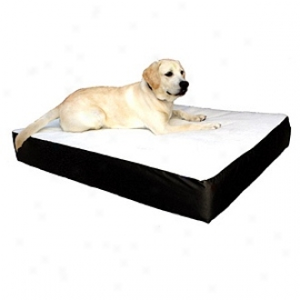 Majestic Pet Products Orthopedic Double Fondling Bed Small - Medium 24x34, Black