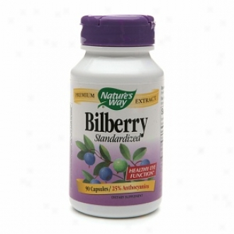 Nature's Way Bilberry Extract, 80 Mg, Capsules