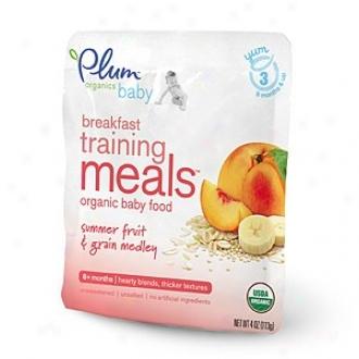 Plum Organics Baby Breakfast Training Meals Organic Baby Food: Stage 3, Summer Fruit & Grain Medley