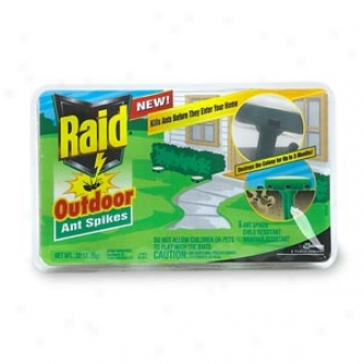 Raid Outdoor Ant Spikes