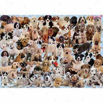Ravensburger Dogs Galore! 1000 Piece Jigsaw Puzzle Ages 12+
