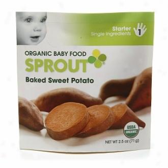 Sprout Organic Baby Food:  1 Starter: Sinvle nIgredients, Baked Sweet Potato