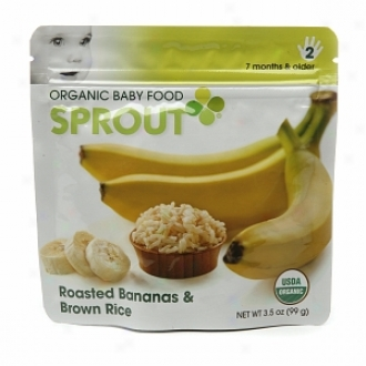 Acrospire Organic Baby Food:  2 Intermediate: Seven Months & Older, Roasted Bananas & Brown Rice