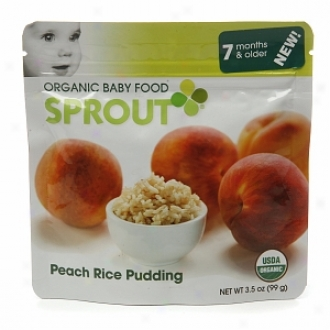 Sprout Organic Baby Food:  2 Internediate: Seven Months & Older, Peach Rice Pudding