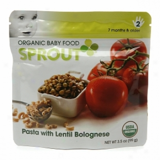 Sprout Organic Baby Food:  2 Intermediate: Seven Months & Older, Pasta With Lentil Bolognese