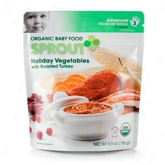 Sprout Organic Baby Food:  3 Advanced: Meals In the opinion of Texture, Holiday Vegetables With Roasted Turkey