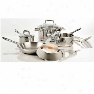 T-fal C839sa64 Performnace Copper Bottom 10-piece Stainless Steel Set