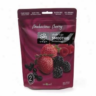 Vega Shake & Go Smoothie Resealable Bag, Bodacious Berry